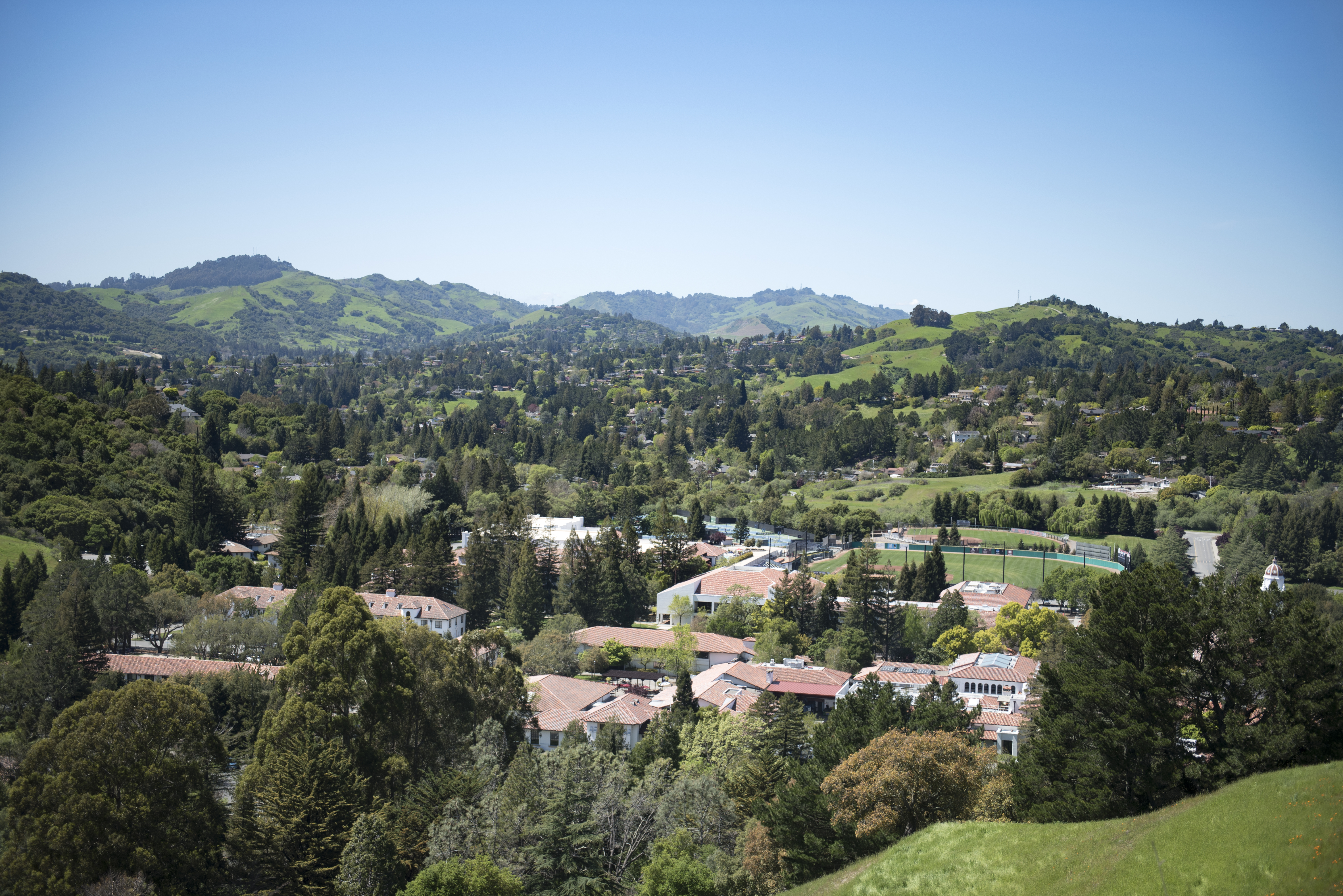 green hills, trees surrounding saint marys campus