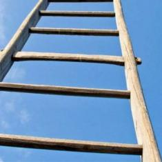 Image for Climbing the Ladder of Inference
