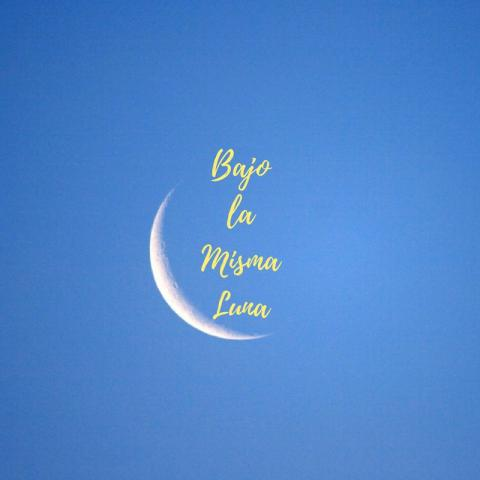 """a crescent moon frames the words """"Bajo la Misma Luna"""" in yellow script on a faded blue background"""