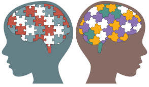 Picture of 2 brains with different puzzle pieces making up the brain