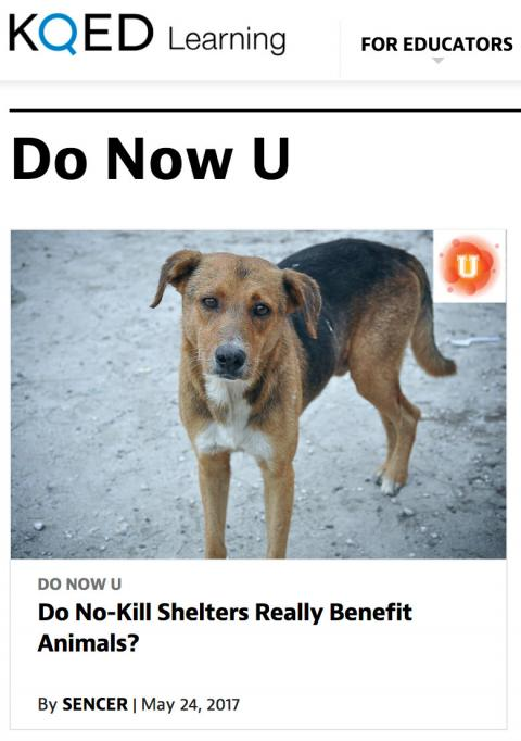 A KQED Do Now U article on no-kill animal shelters was submitted by SMC students and selected as the featured science education post.