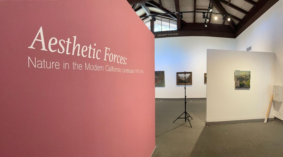 Aesthetic Forces: Behind-the-Scenes